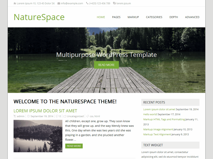 NatureSpace Preview Wordpress Theme - Rating, Reviews, Preview, Demo & Download
