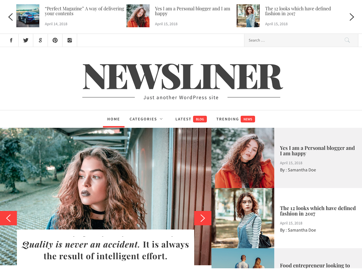 Newsliner Preview Wordpress Theme - Rating, Reviews, Preview, Demo & Download