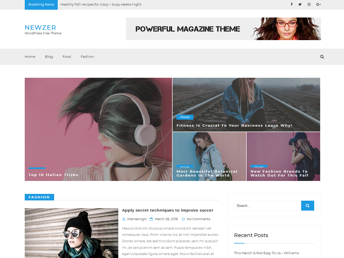 Newzer Preview Wordpress Theme - Rating, Reviews, Preview, Demo & Download