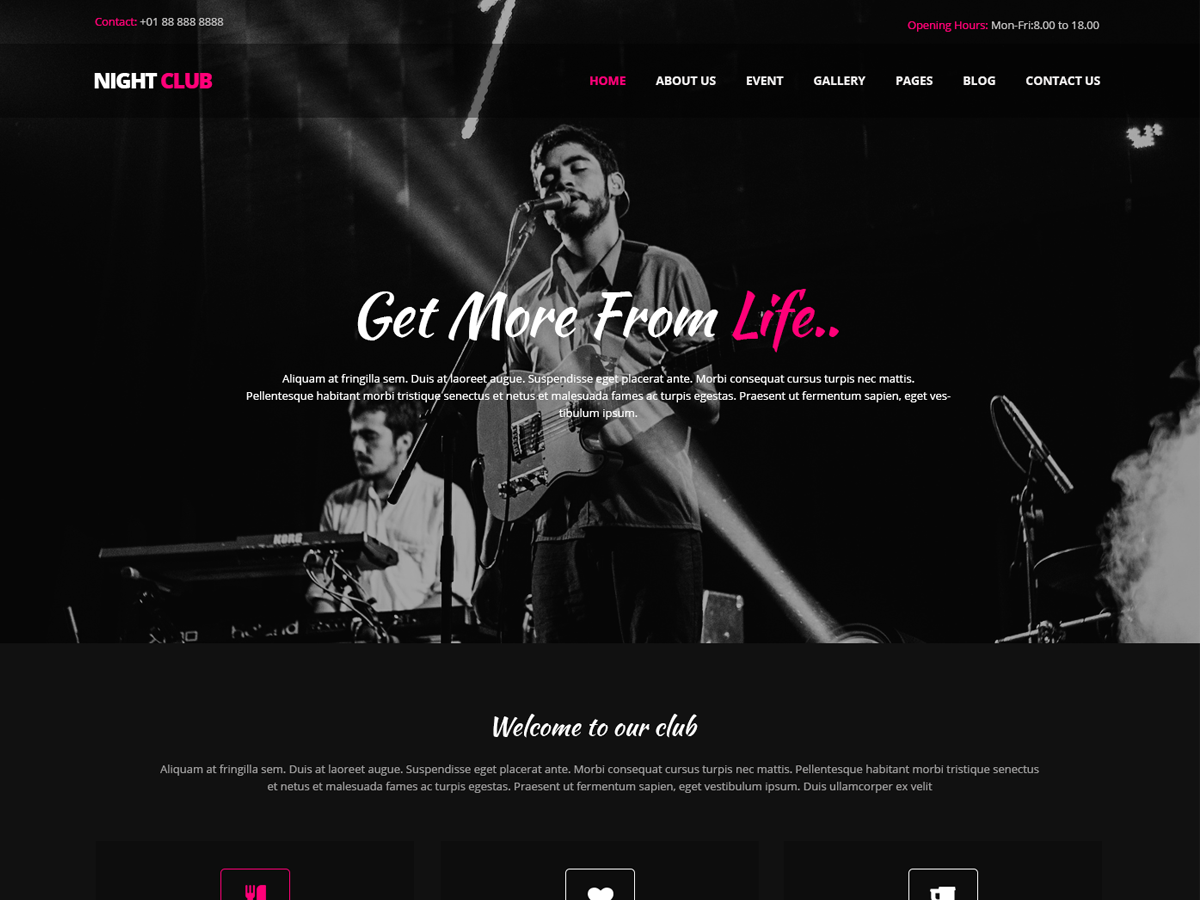 Nighspot Preview Wordpress Theme - Rating, Reviews, Preview, Demo & Download