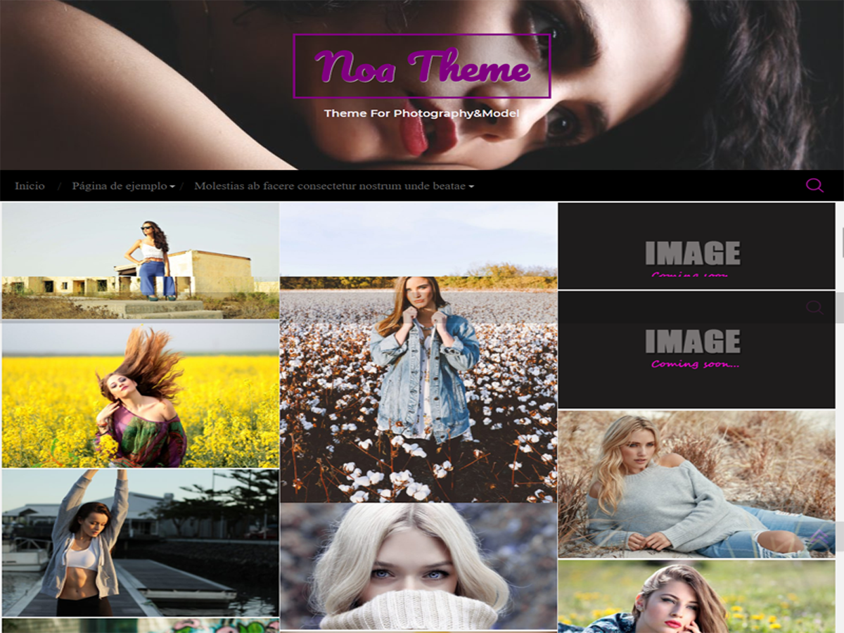 Noa Preview Wordpress Theme - Rating, Reviews, Preview, Demo & Download