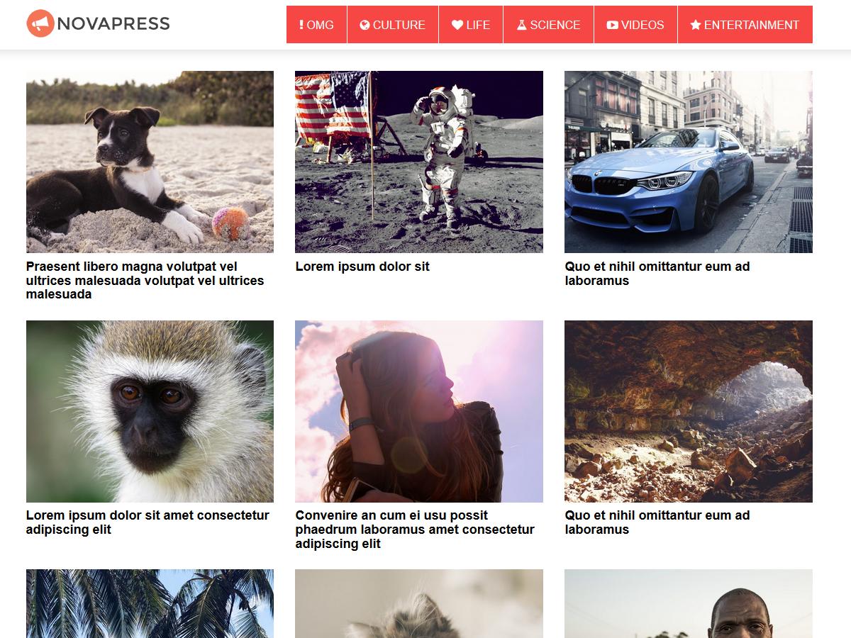 NovaPress Preview Wordpress Theme - Rating, Reviews, Preview, Demo & Download