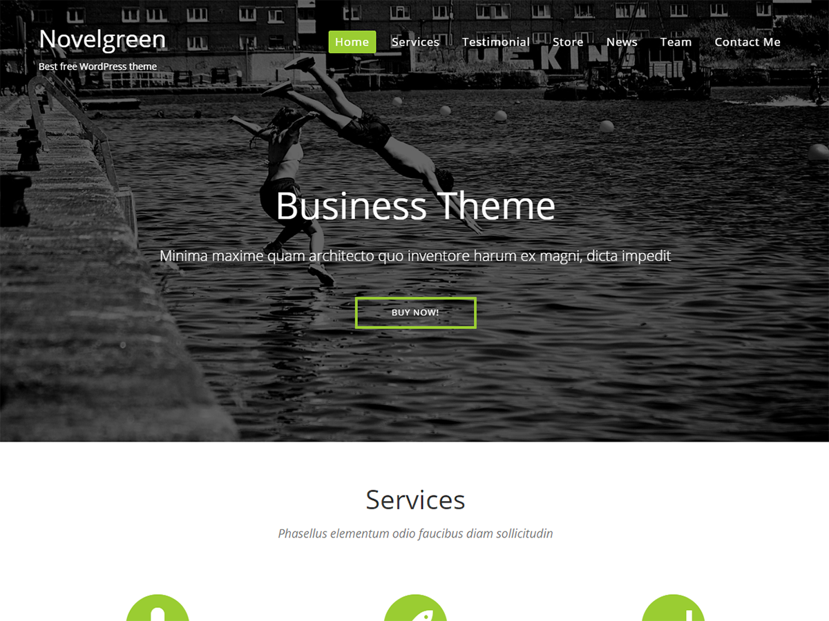NovelGreen Preview Wordpress Theme - Rating, Reviews, Preview, Demo & Download