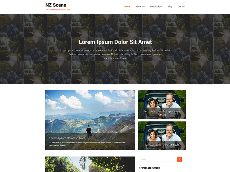 NZ Scene Preview Wordpress Theme - Rating, Reviews, Preview, Demo & Download
