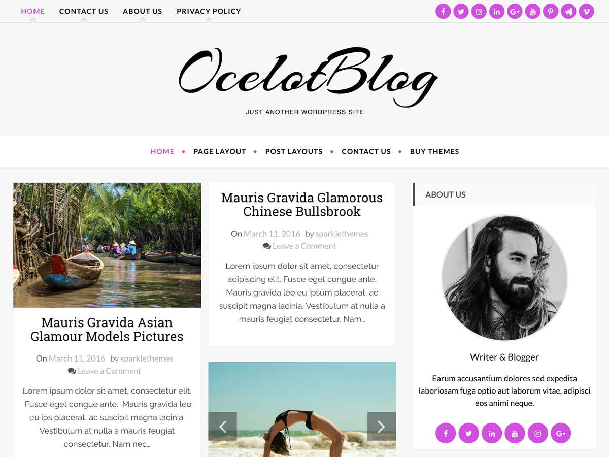 Ocelot Preview Wordpress Theme - Rating, Reviews, Preview, Demo & Download