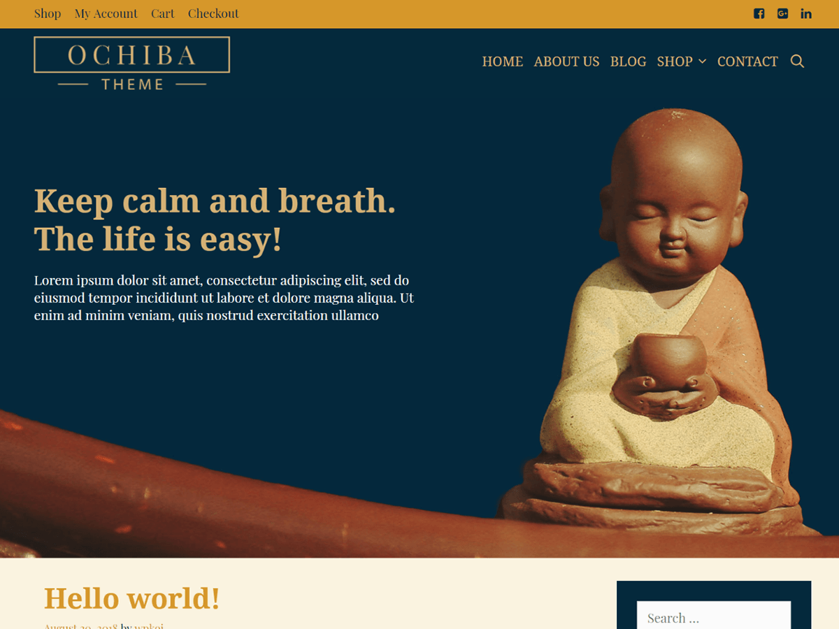 Ochiba Preview Wordpress Theme - Rating, Reviews, Preview, Demo & Download