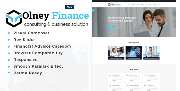 Olney Finance Preview Wordpress Theme - Rating, Reviews, Preview, Demo & Download
