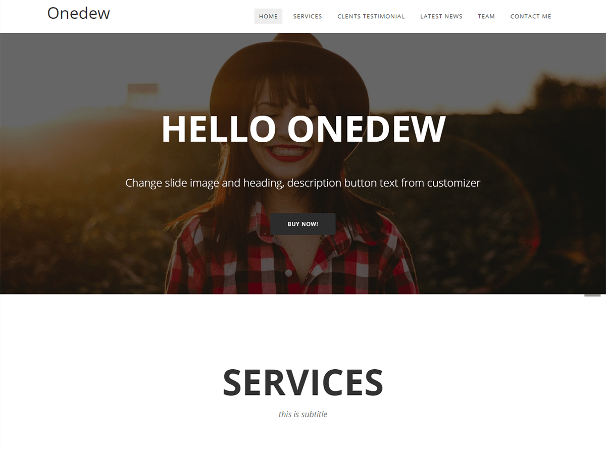 Onedew Preview Wordpress Theme - Rating, Reviews, Preview, Demo & Download