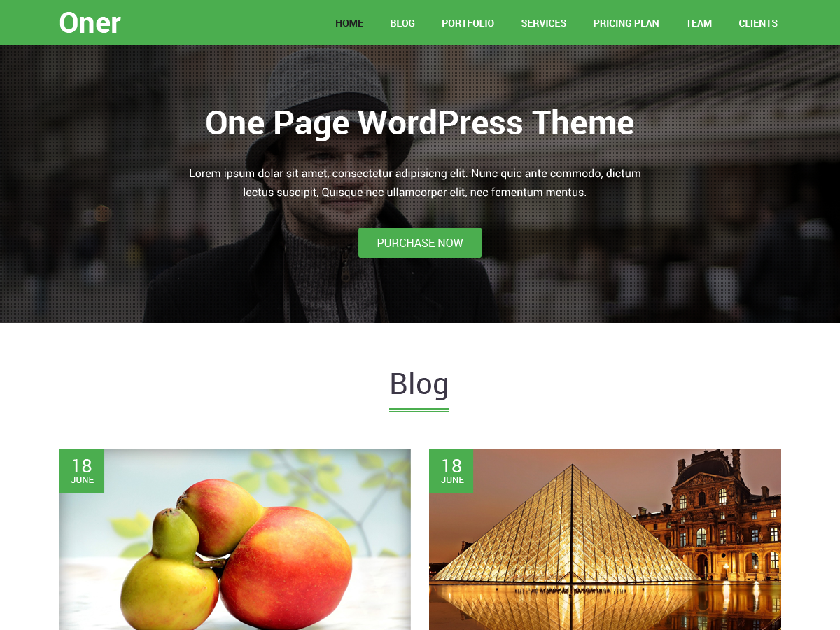 Oner Preview Wordpress Theme - Rating, Reviews, Preview, Demo & Download