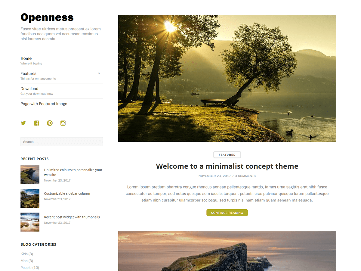 Openness Preview Wordpress Theme - Rating, Reviews, Preview, Demo & Download