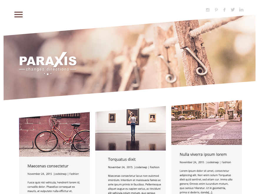 Paraxis Lite Preview Wordpress Theme - Rating, Reviews, Preview, Demo & Download