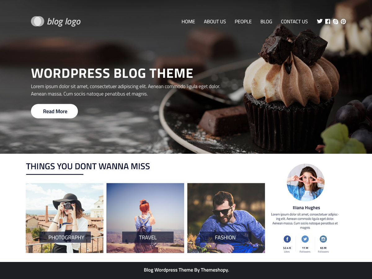 Perfect Blog Preview Wordpress Theme - Rating, Reviews, Preview, Demo & Download