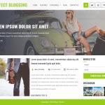 Perfect Blogging