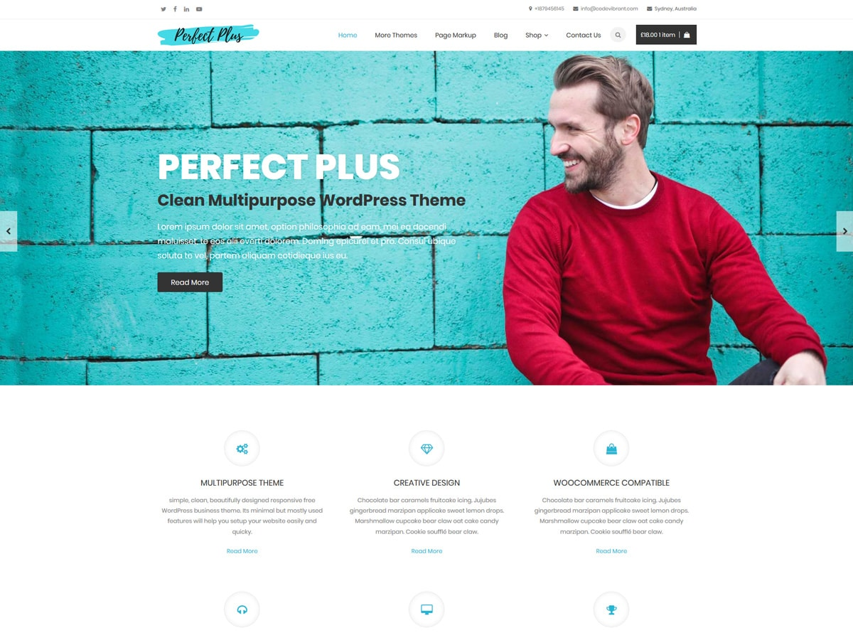 Perfect Plus Preview Wordpress Theme - Rating, Reviews, Preview, Demo & Download