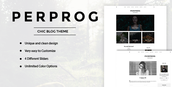 PerProg Preview Wordpress Theme - Rating, Reviews, Preview, Demo & Download