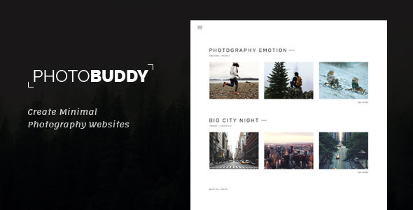 PhotoBuddy Preview Wordpress Theme - Rating, Reviews, Preview, Demo & Download