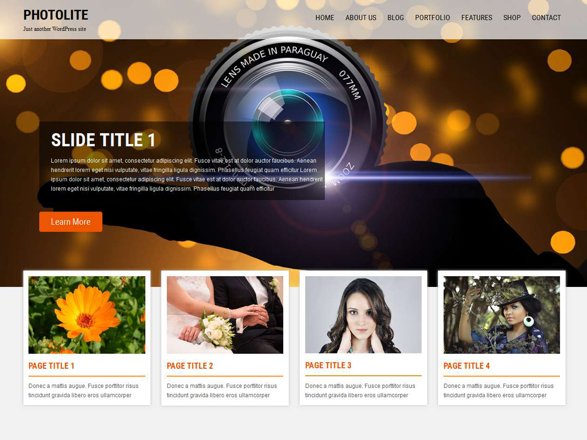 Photolite Preview Wordpress Theme - Rating, Reviews, Preview, Demo & Download