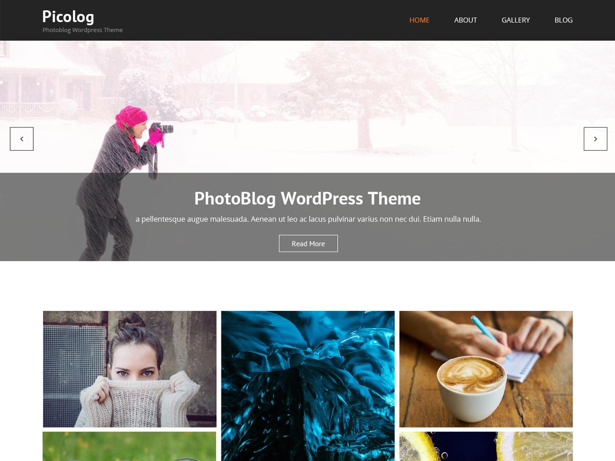 Picolog Preview Wordpress Theme - Rating, Reviews, Preview, Demo & Download