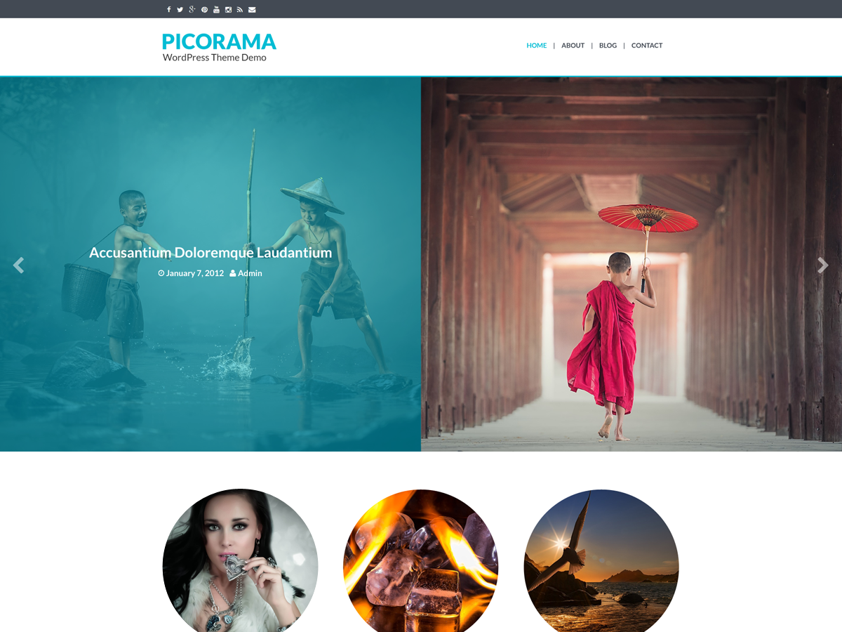 Picorama Preview Wordpress Theme - Rating, Reviews, Preview, Demo & Download