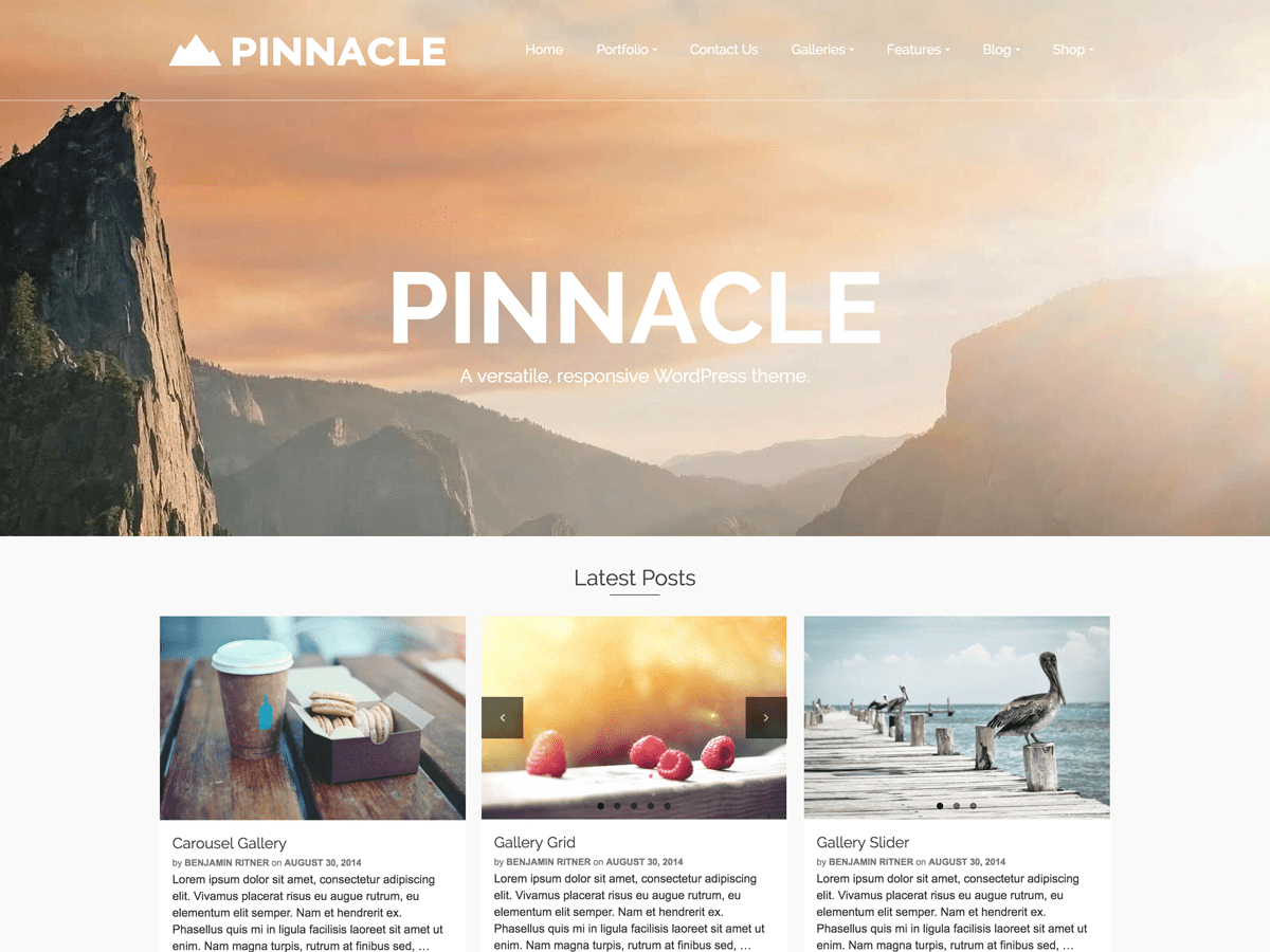 Pinnacle Preview Wordpress Theme - Rating, Reviews, Preview, Demo & Download