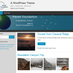Planet Foundation