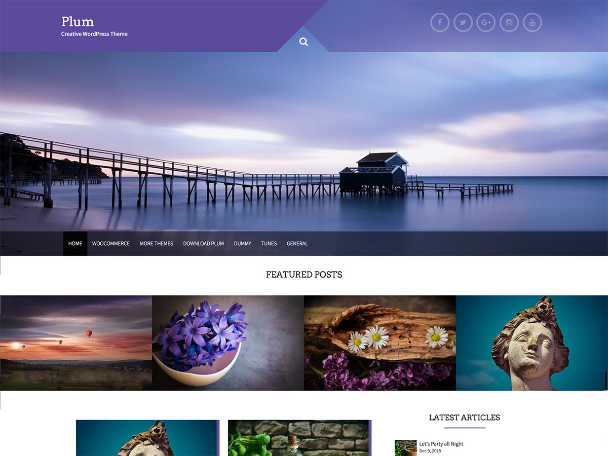 Plum Preview Wordpress Theme - Rating, Reviews, Preview, Demo & Download