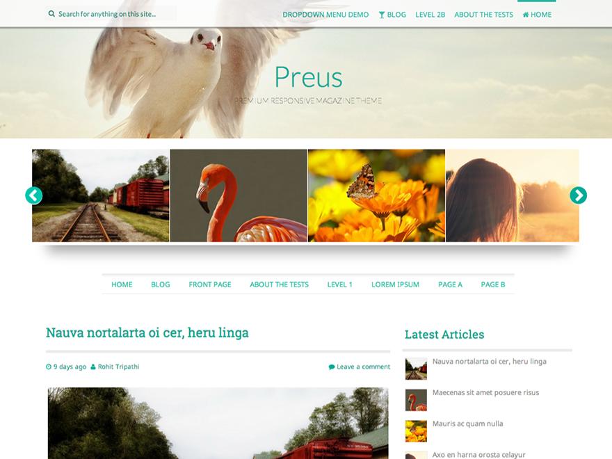 Preus Preview Wordpress Theme - Rating, Reviews, Preview, Demo & Download