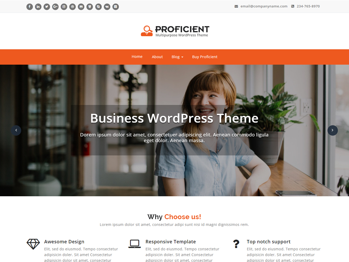 Proficient Preview Wordpress Theme - Rating, Reviews, Preview, Demo & Download