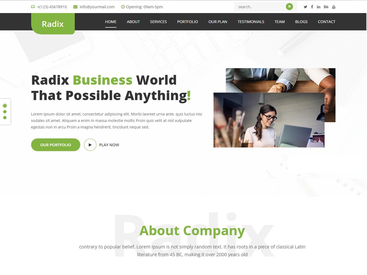 Radix Multipurpose Preview Wordpress Theme - Rating, Reviews, Preview, Demo & Download