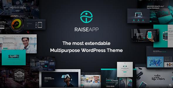 RaiseApp Preview Wordpress Theme - Rating, Reviews, Preview, Demo & Download