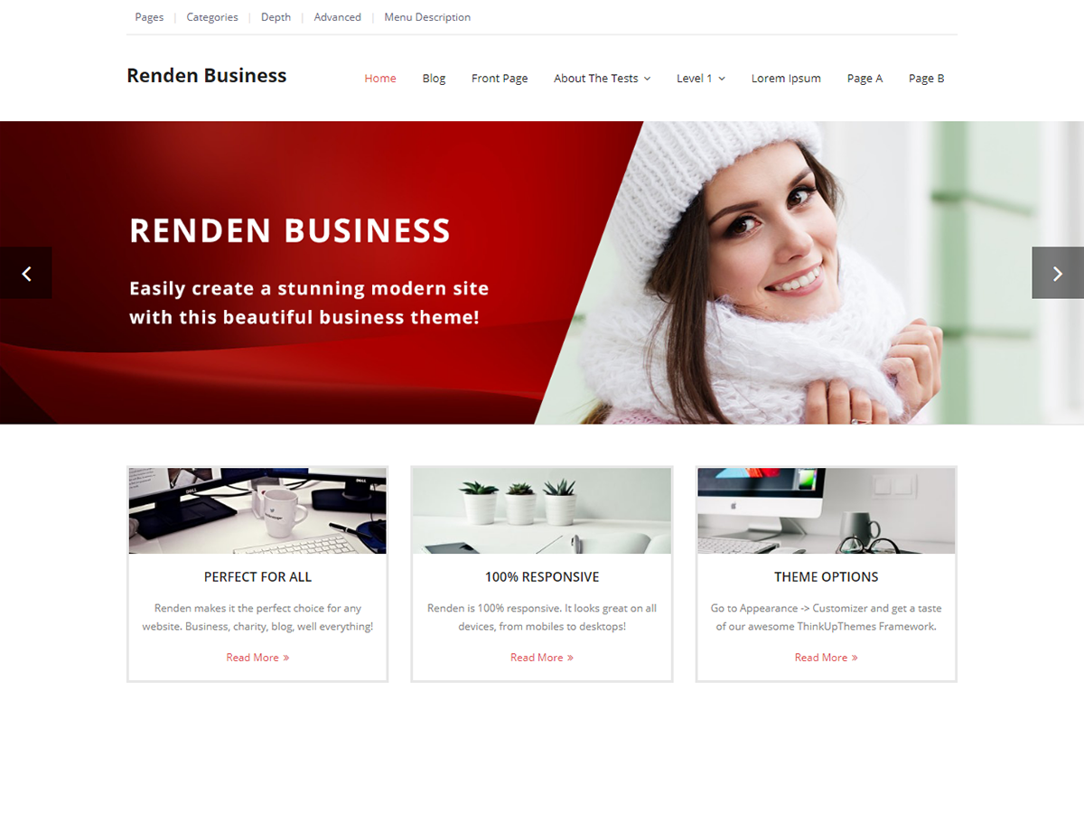 Renden Business Preview Wordpress Theme - Rating, Reviews, Preview, Demo & Download