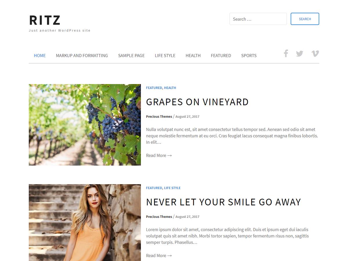 Ritz Preview Wordpress Theme - Rating, Reviews, Preview, Demo & Download