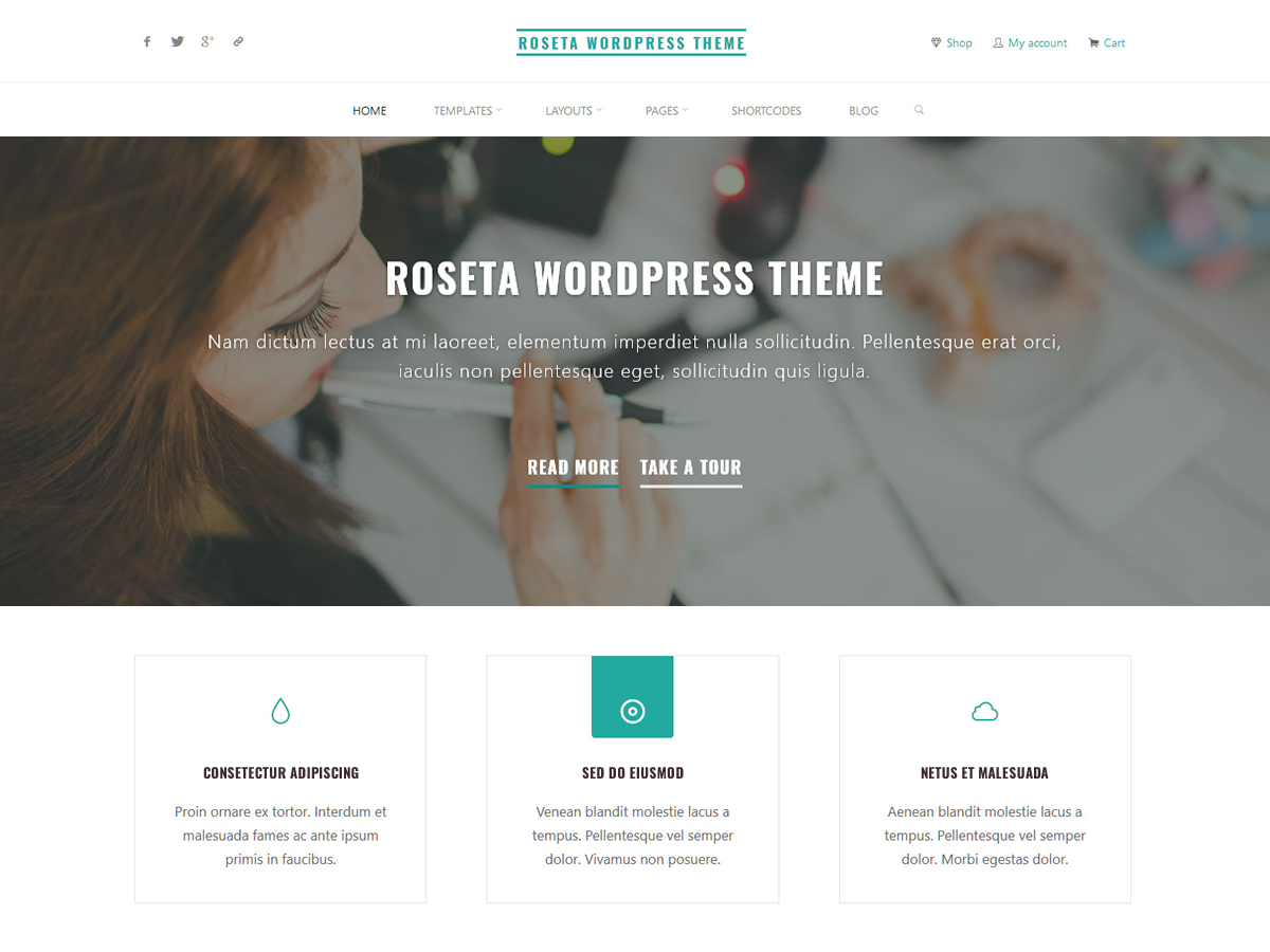Roseta Preview Wordpress Theme - Rating, Reviews, Preview, Demo & Download