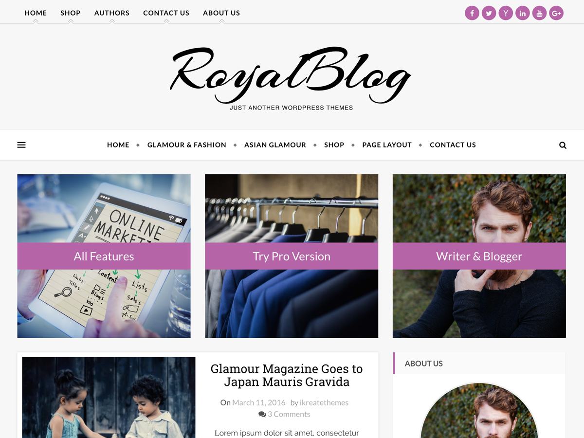 Royal Blog Preview Wordpress Theme - Rating, Reviews, Preview, Demo & Download