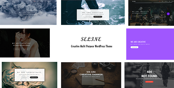 Seline Preview Wordpress Theme - Rating, Reviews, Preview, Demo & Download