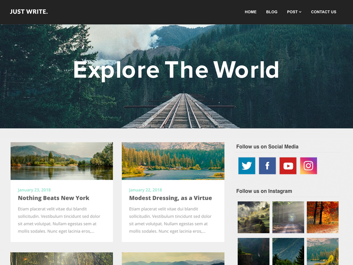 SEO Writers Preview Wordpress Theme - Rating, Reviews, Preview, Demo & Download