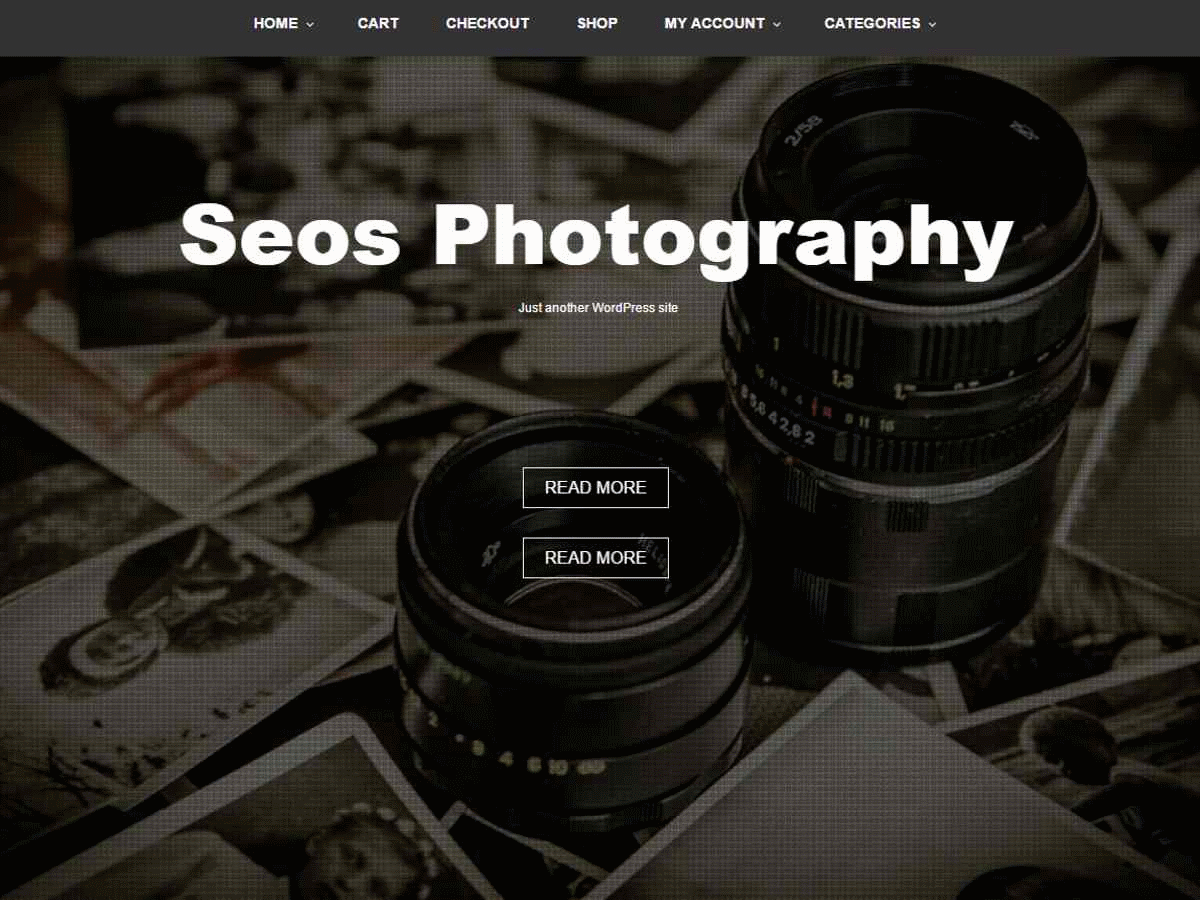 Seos Photography Preview Wordpress Theme - Rating, Reviews, Preview, Demo & Download