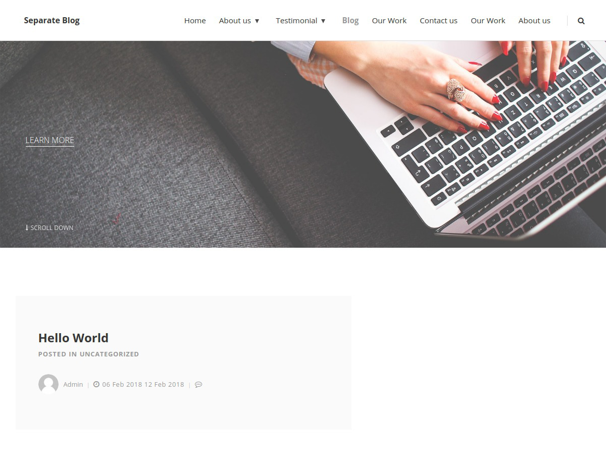 Separate Blog Preview Wordpress Theme - Rating, Reviews, Preview, Demo & Download
