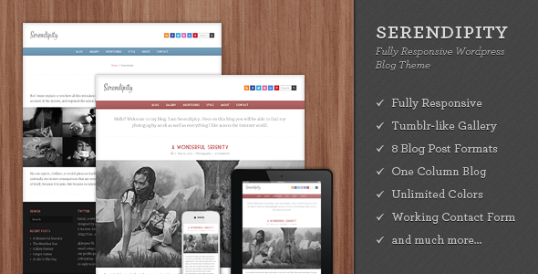 Serendipity Preview Wordpress Theme - Rating, Reviews, Preview, Demo & Download
