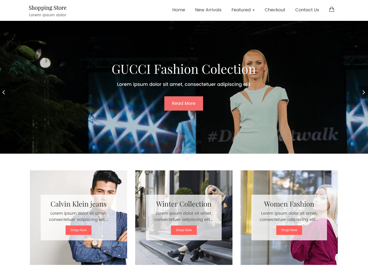 Shopping Store Preview Wordpress Theme - Rating, Reviews, Preview, Demo & Download