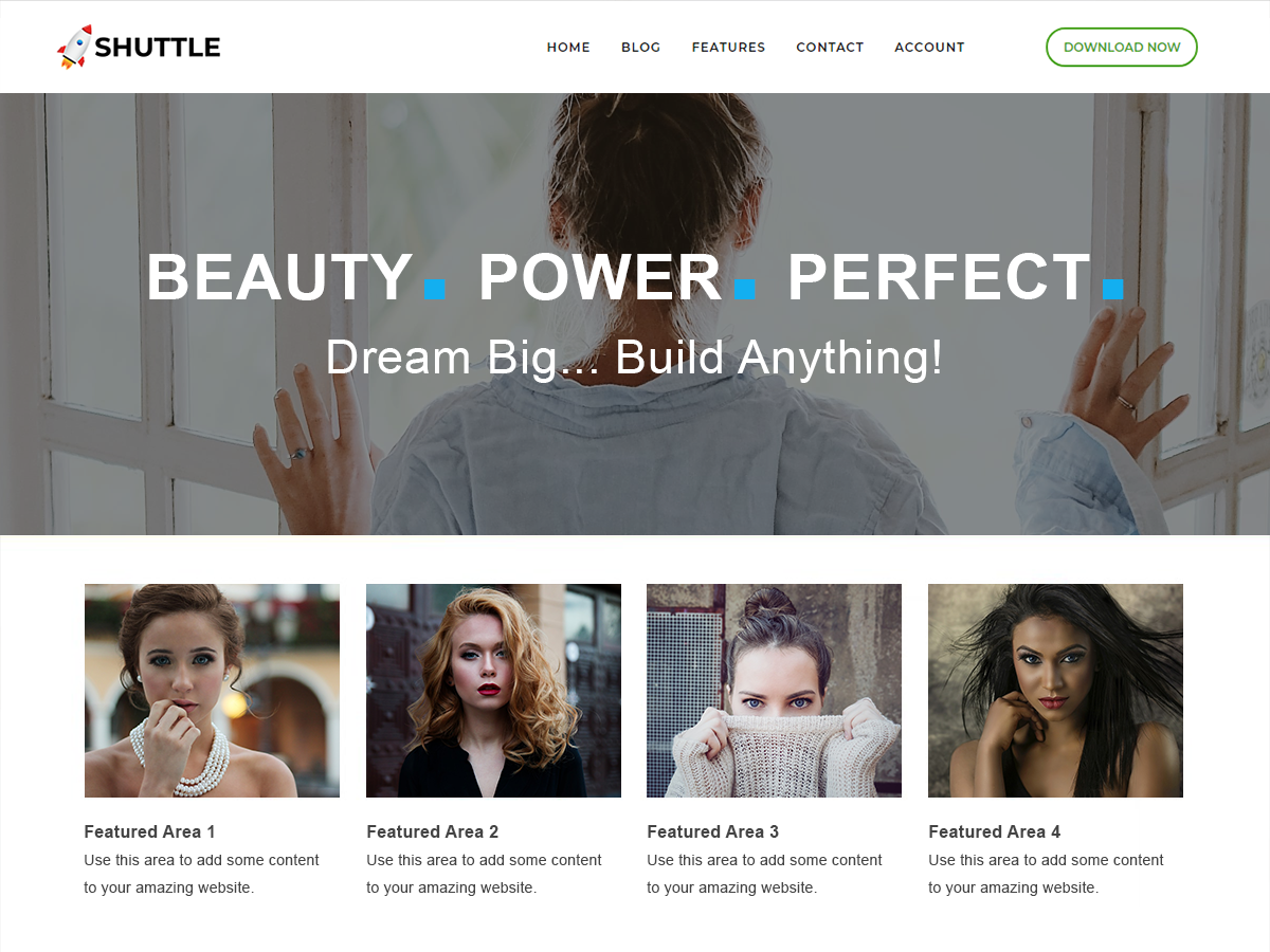 Shuttle Business Preview Wordpress Theme - Rating, Reviews, Preview, Demo & Download