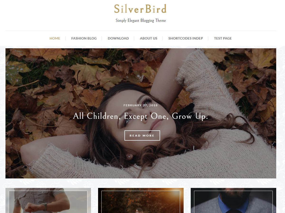 SilverBird Preview Wordpress Theme - Rating, Reviews, Preview, Demo & Download
