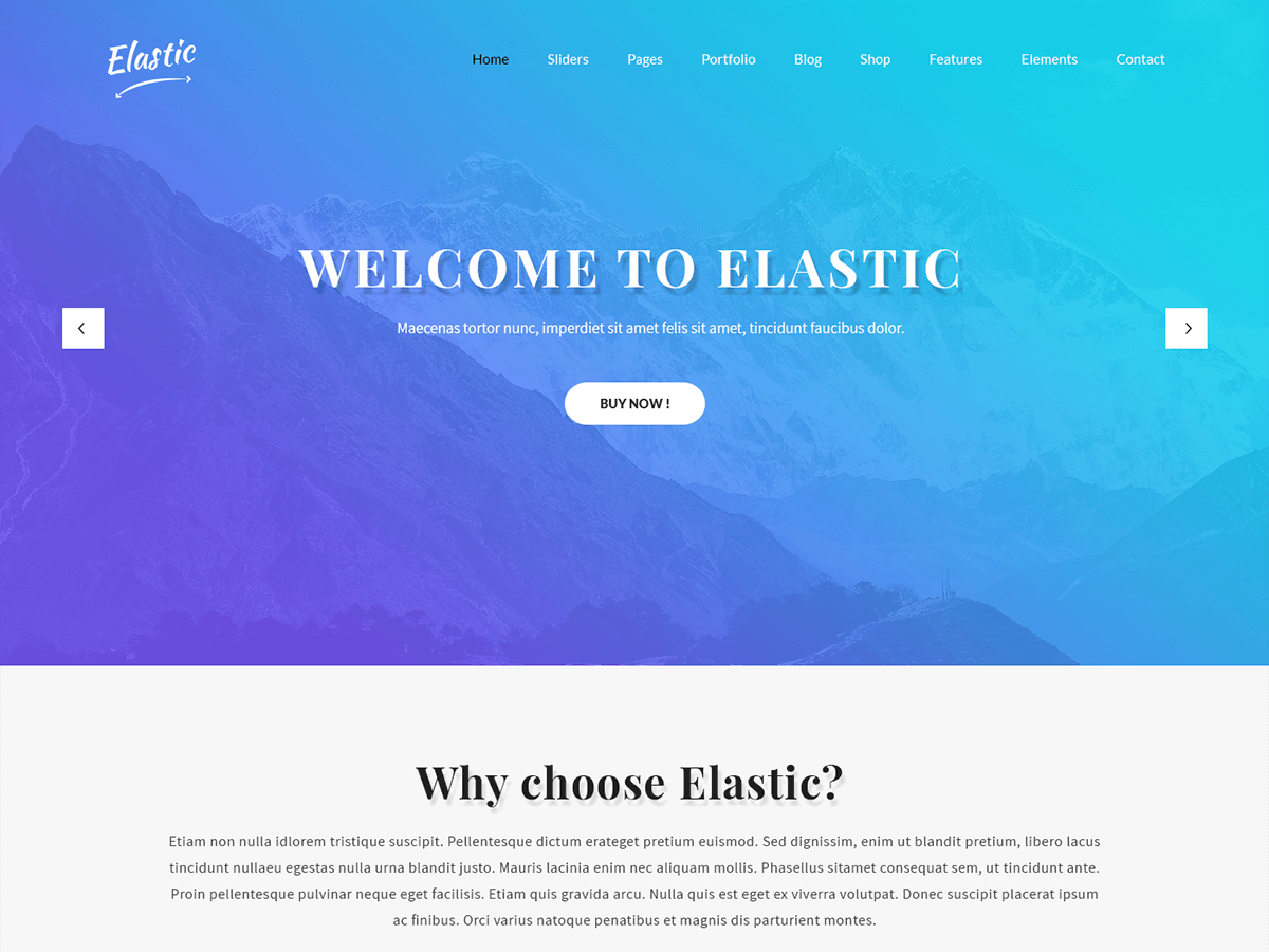 SKT Elastic Preview Wordpress Theme - Rating, Reviews, Preview, Demo & Download