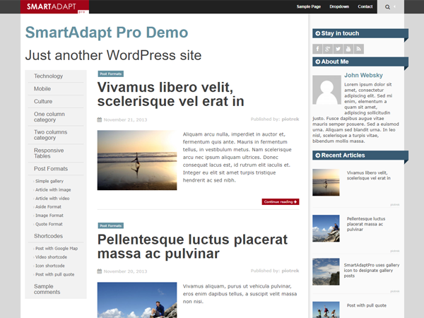 SmartAdapt Preview Wordpress Theme - Rating, Reviews, Preview, Demo & Download