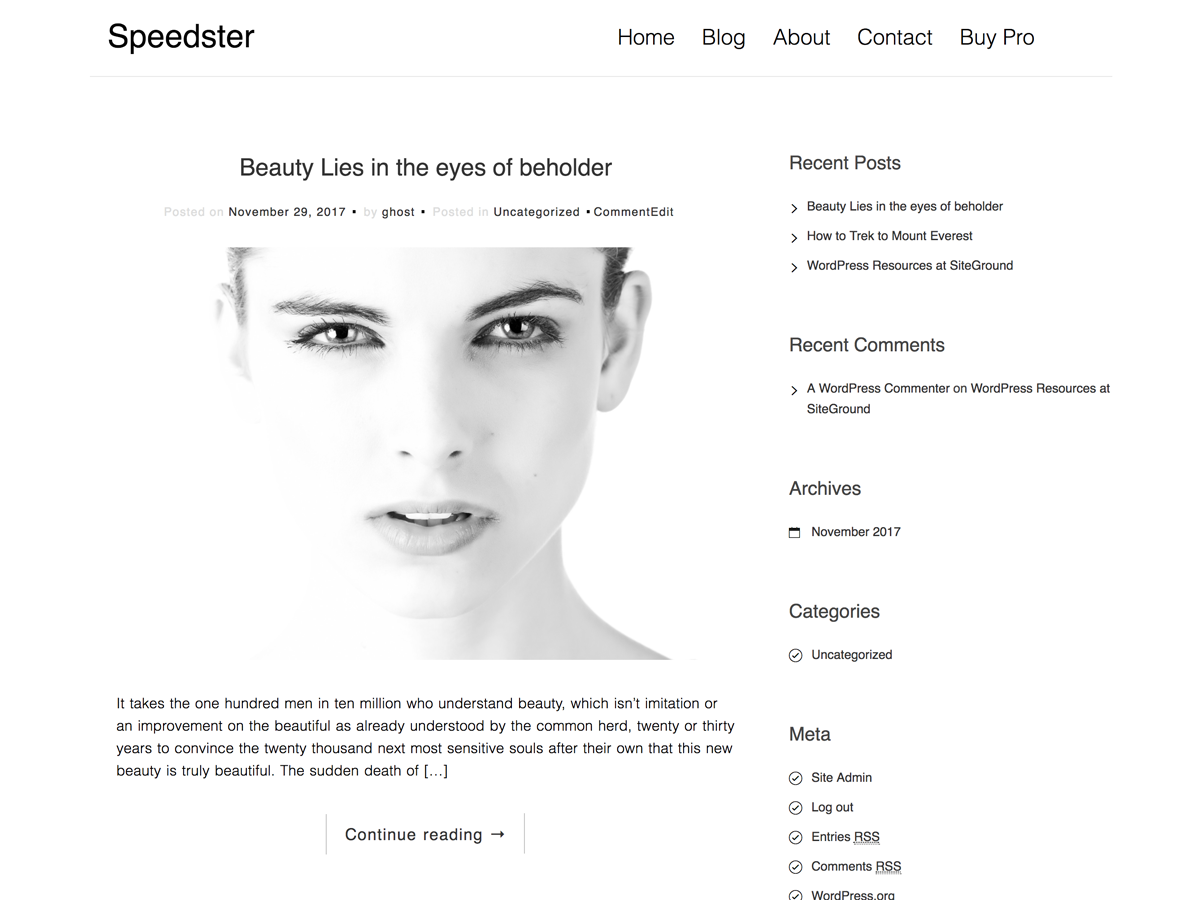 Speedster Preview Wordpress Theme - Rating, Reviews, Preview, Demo & Download