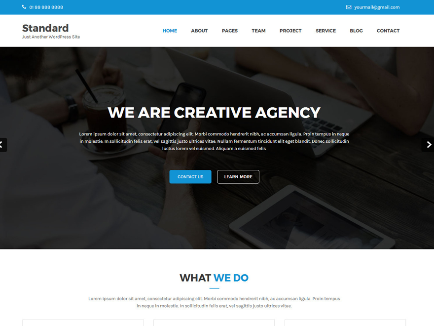 Standard Lite Preview Wordpress Theme - Rating, Reviews, Preview, Demo & Download