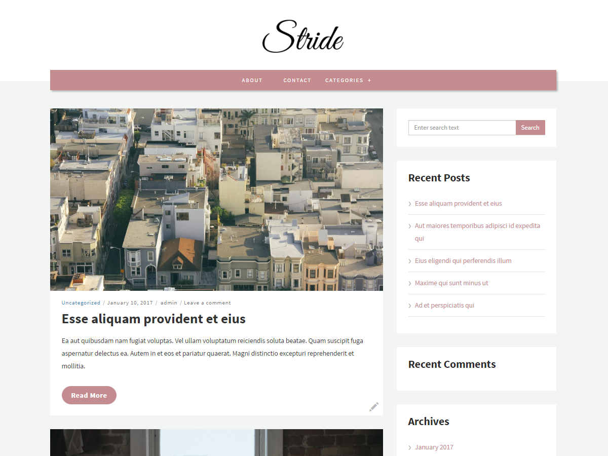 Stride Lite Preview Wordpress Theme - Rating, Reviews, Preview, Demo & Download
