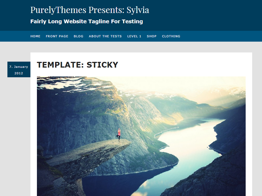Sylvia Preview Wordpress Theme - Rating, Reviews, Preview, Demo & Download