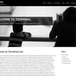 Terminal Lite
