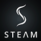 The Steam